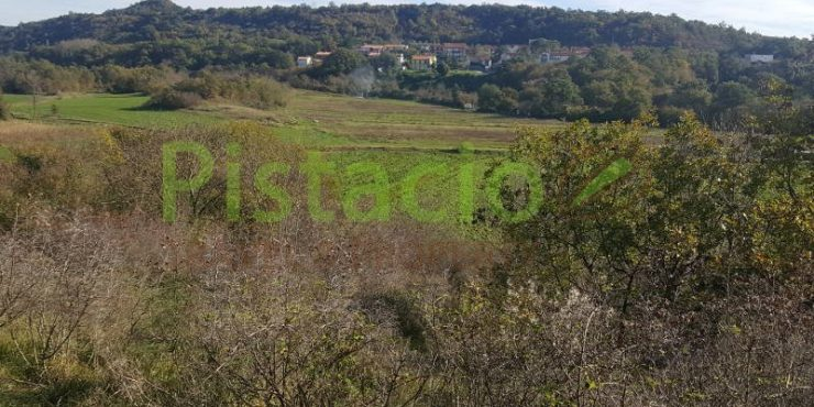 Building plot for sale Labin 3847 sqm – 35€/sqm