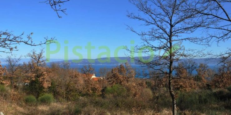Building land for sale Drenje Istria with a permit and sea view, 848 sq.m.