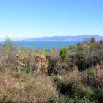 Building land for sale Drenje Istria 1016 sqm.