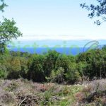 Building land for sale Drenje Istria 800 sqm
